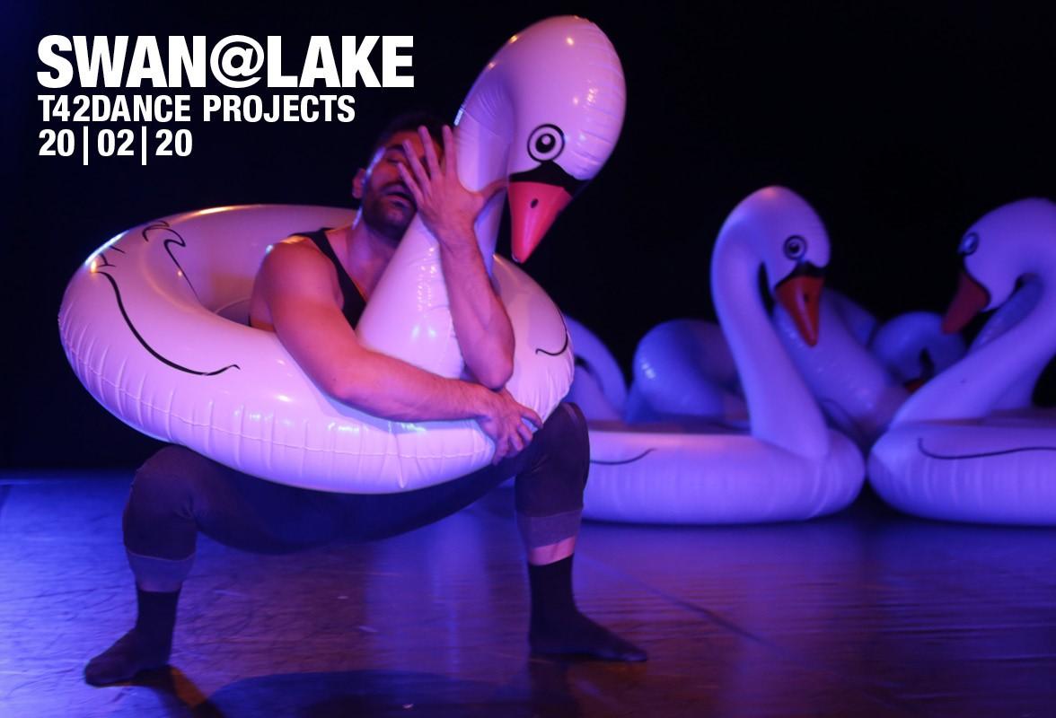 Swan@Lake
